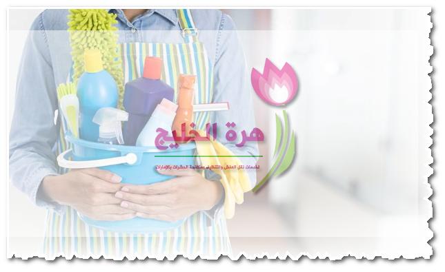 شركة تنظيف في ند الشبا